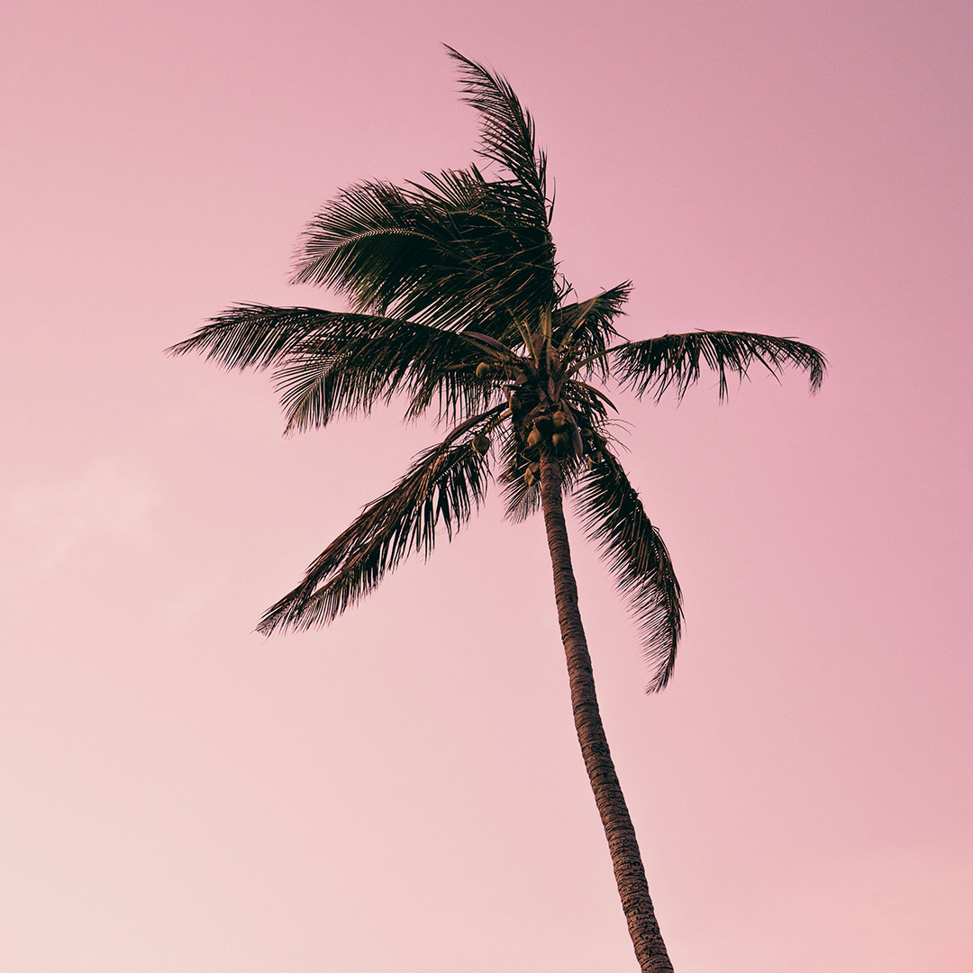 Stream the Sounds of South Beach