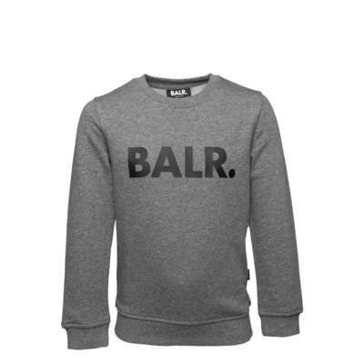 Brand Crew Neck Sweater Kids Grey